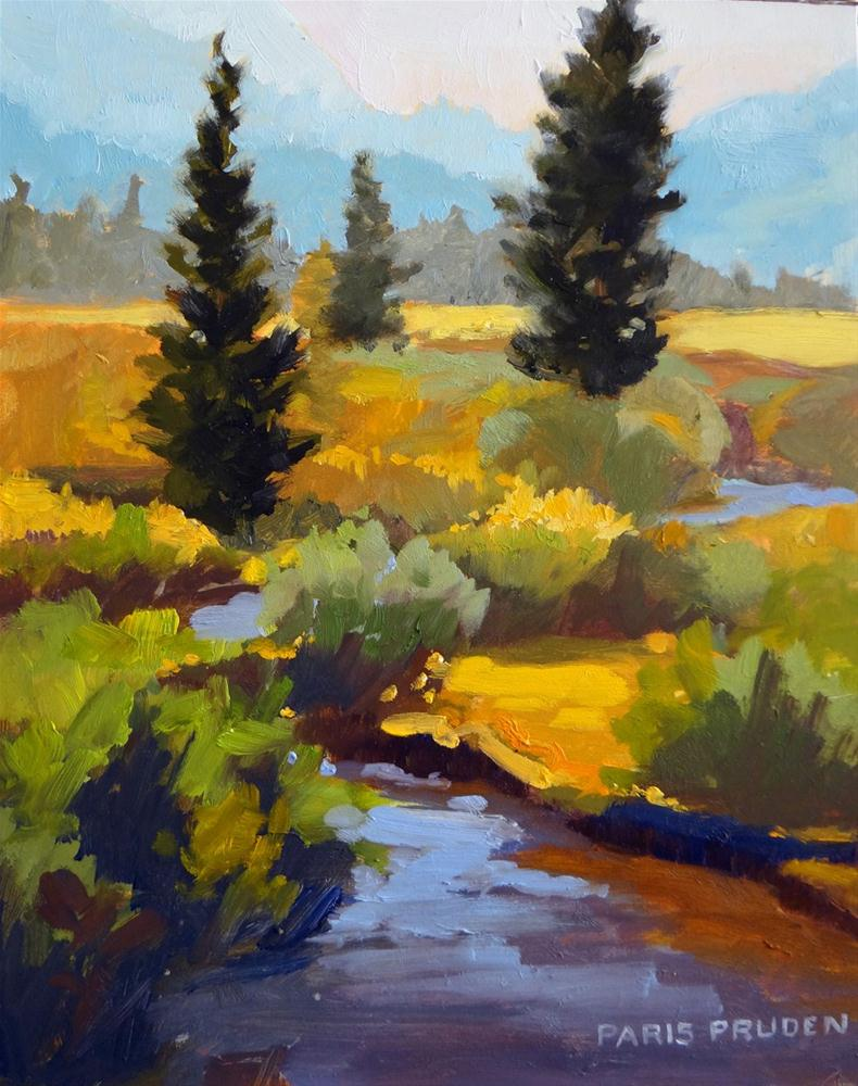 """Stream Through the Valley"" original fine art by Nancy Paris Pruden"