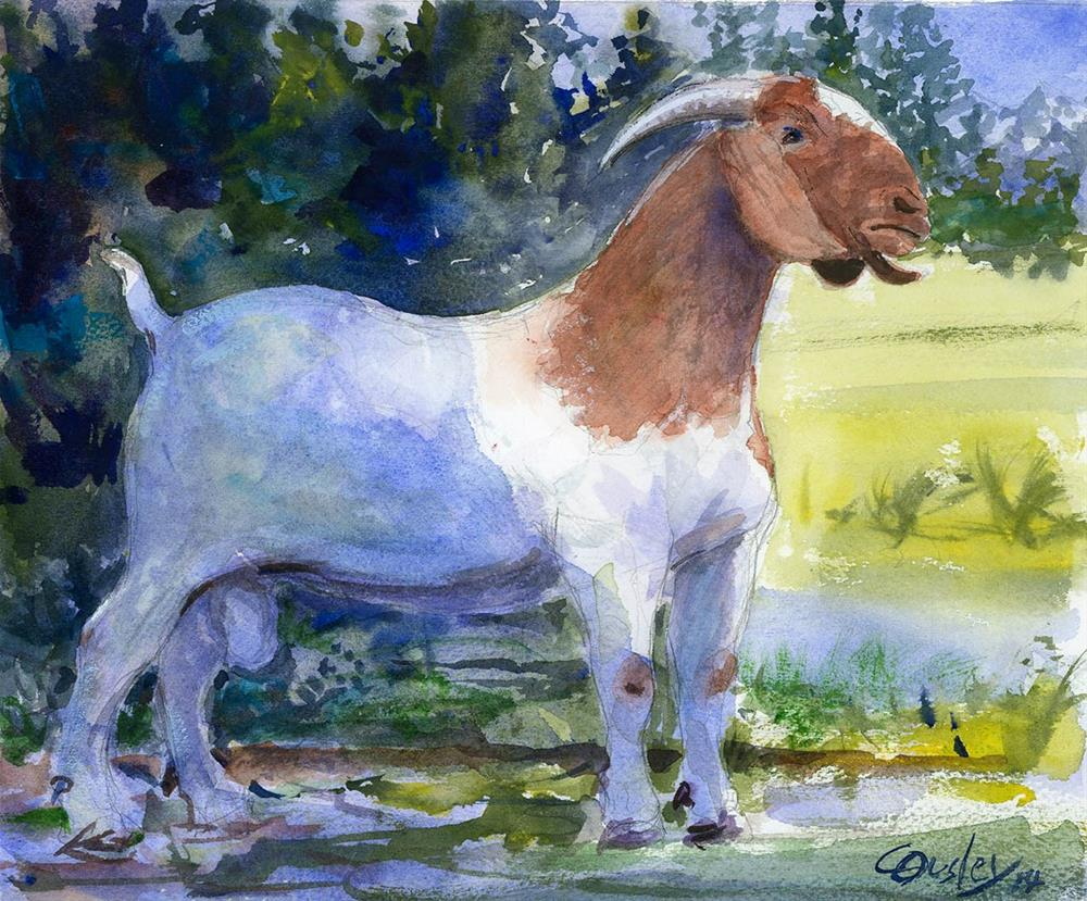 """""""Boer Goat Stepping Out"""" original fine art by Chris Ousley"""