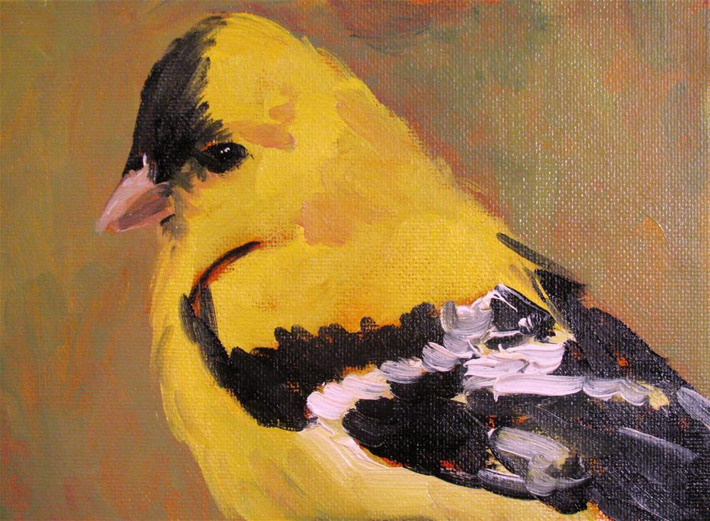 """Finch"" original fine art by Susan Elizabeth Jones"
