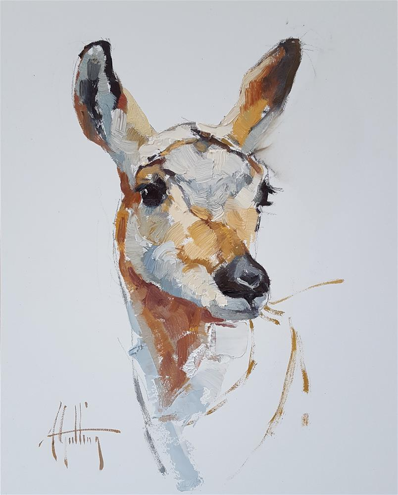 """Antelope Study #8"" original fine art by Abigail Gutting"