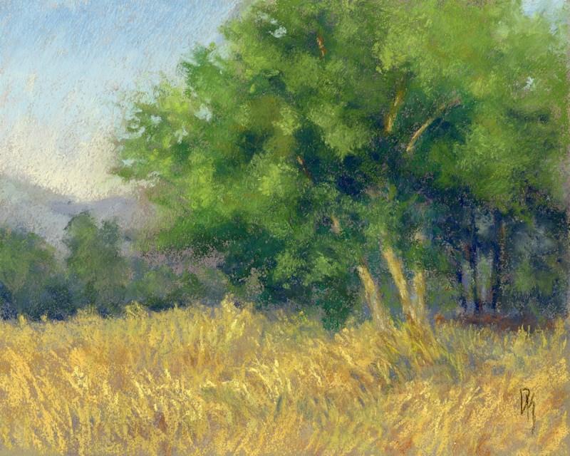 """""""Good Morning Summer"""" original fine art by David King"""