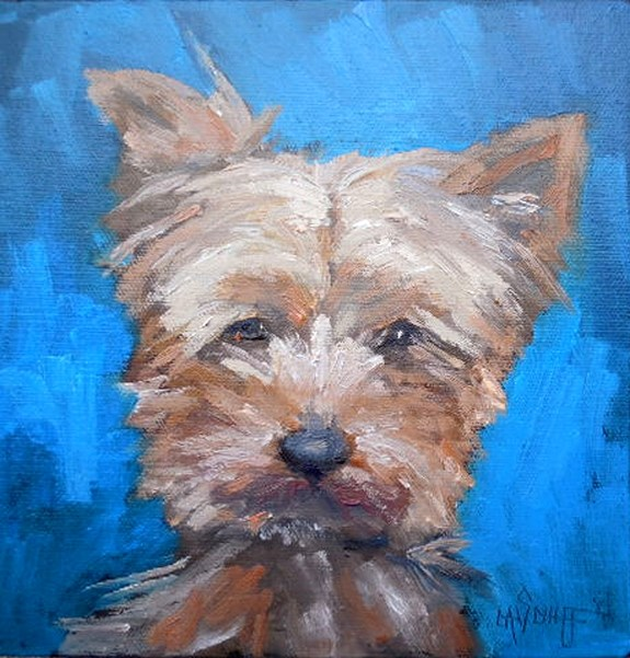 """""""Yorkie Painting, Daily Painting, Small Oil Painting, Yorkshire Terrier Art, 8x8x1.5 Oil"""" original fine art by Carol Schiff"""
