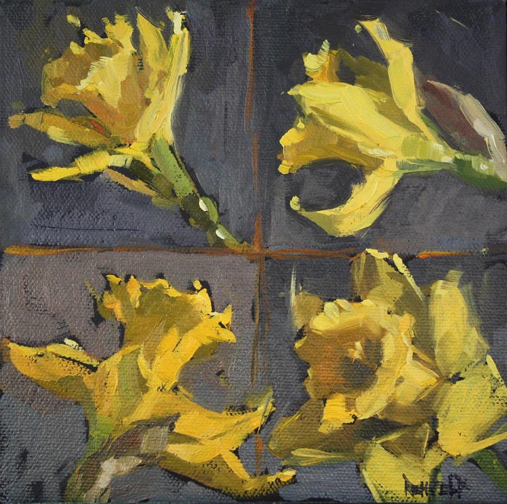 """Daffodil Study"" original fine art by Cathleen Rehfeld"
