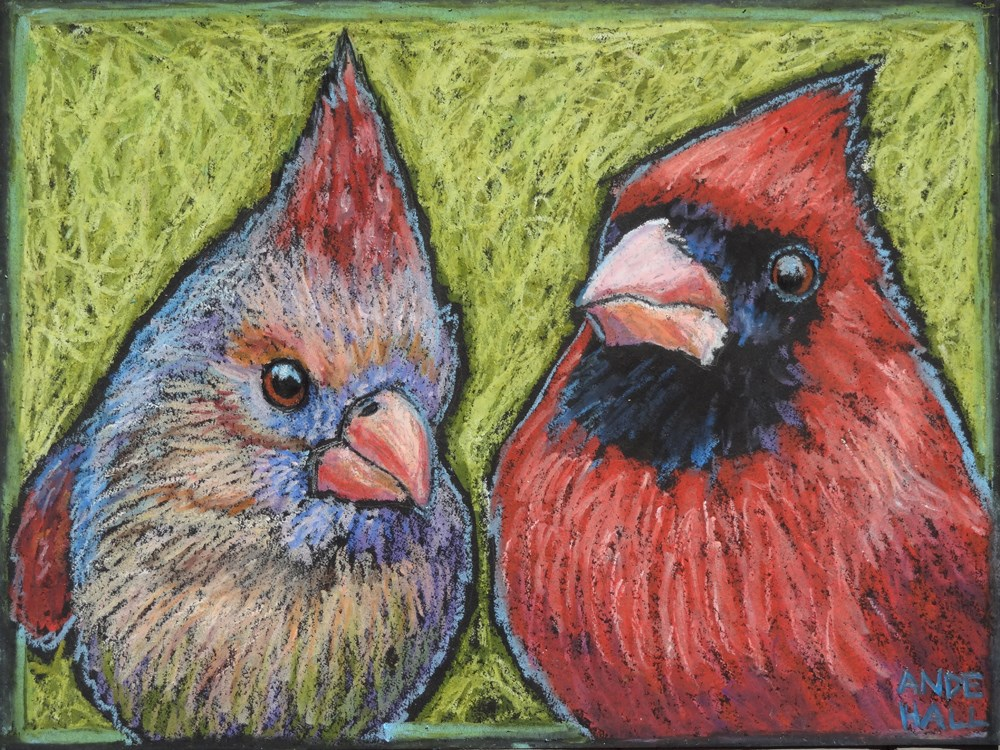 """Cardinals Up Close and Personal"" original fine art by Ande Hall"