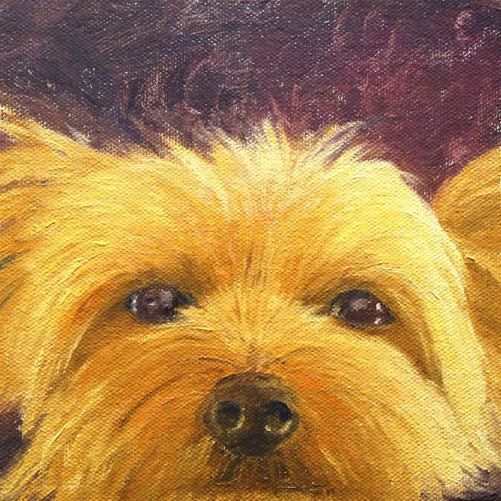"""Peek-a-boo!"" original fine art by Judith McKenna"