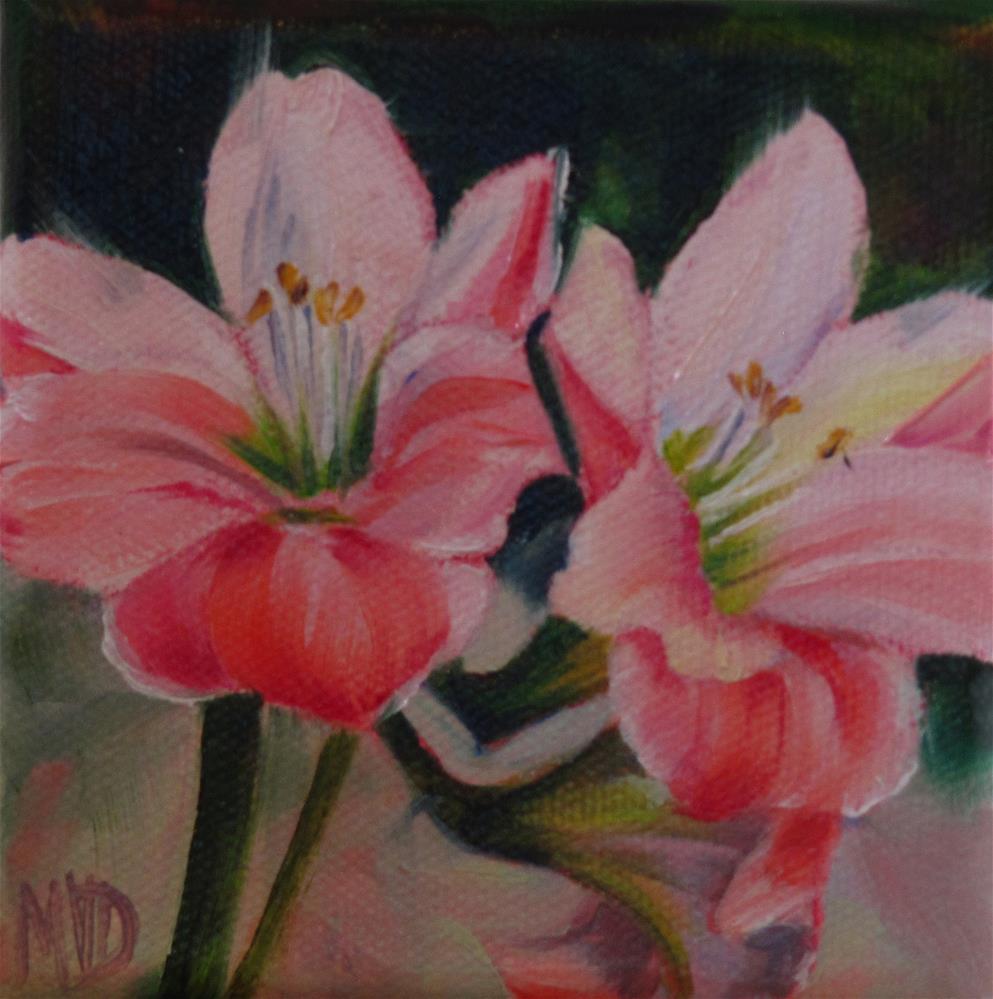 """Amaryllis Blush"" original fine art by Mary Van Deman"