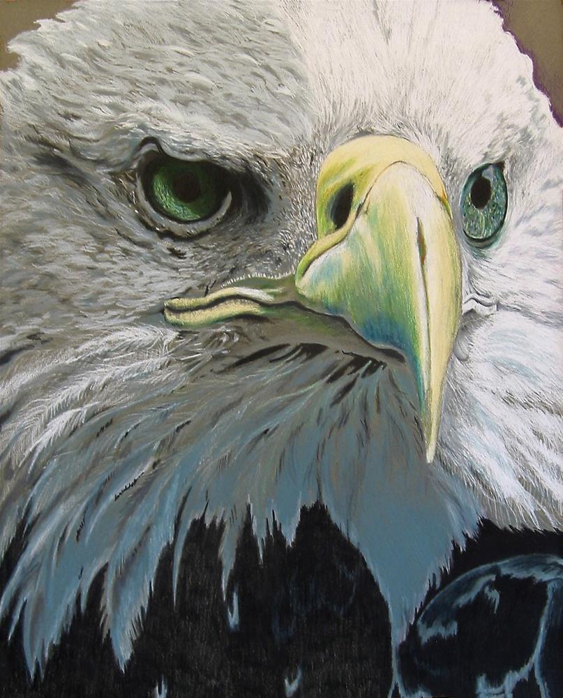 """""""Bald Eagle"""" original fine art by Nancy Parsons"""