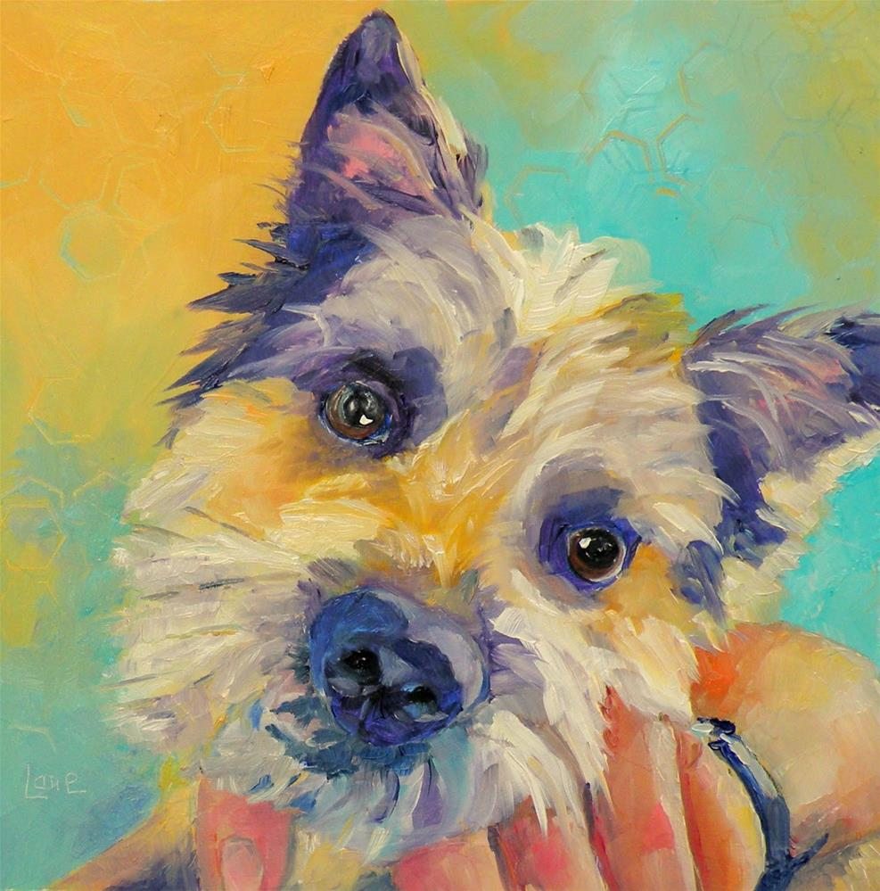 """OLIVER 98/101 OF 101 PET PORTRAITS IN 101 DAYS © SAUNDRA LANE GALLOWAY"" original fine art by Saundra Lane Galloway"