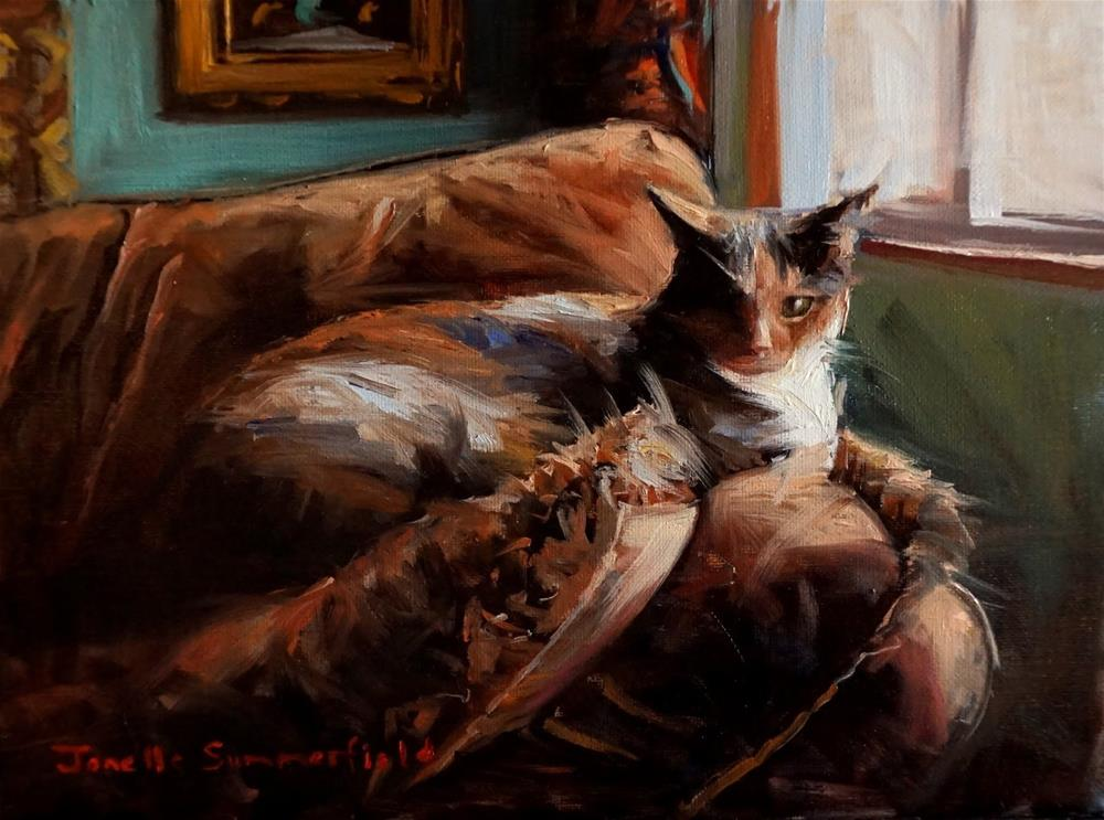 """Comfy Cat"" original fine art by Jonelle Summerfield"