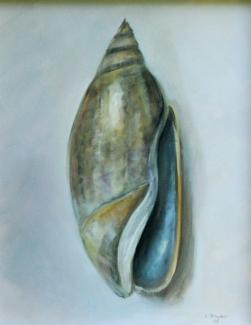 """Olive Shell"" original fine art by Christina Dowdy"