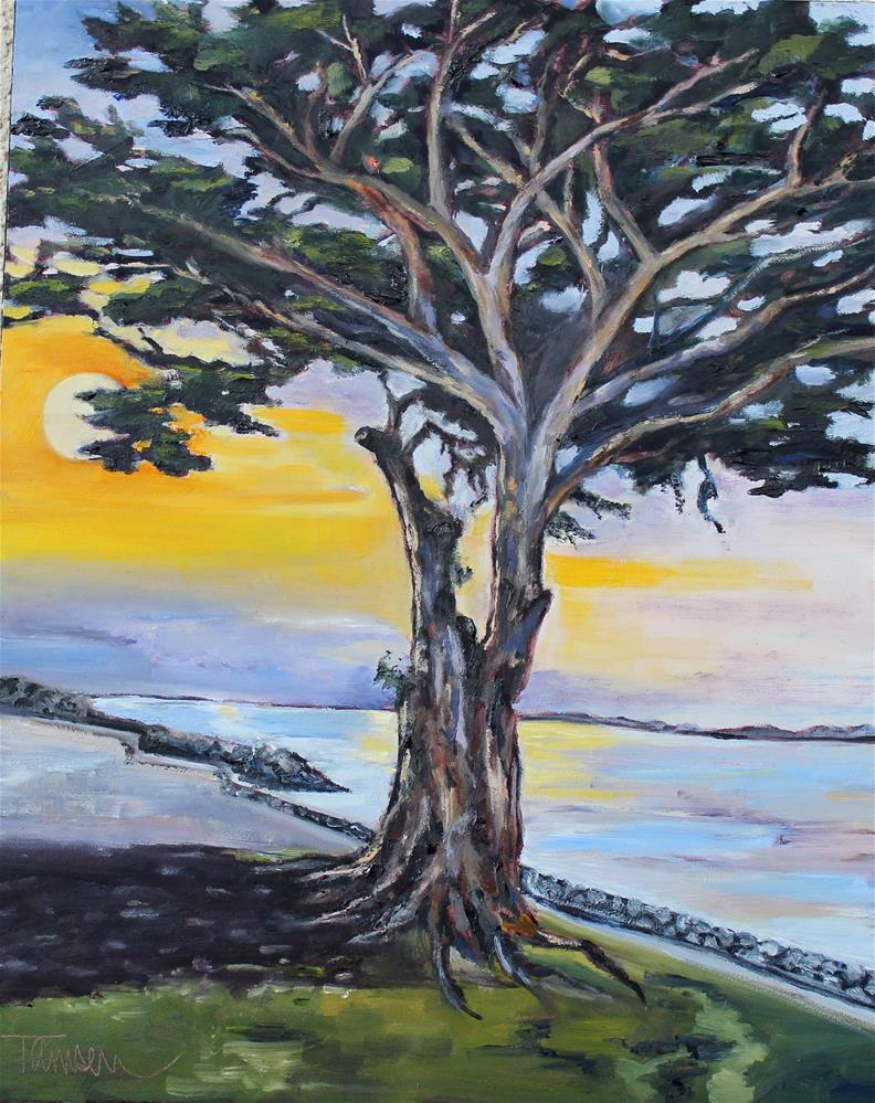 """Monterey Cypress Sunset"" original fine art by Tamsen Armstrong"