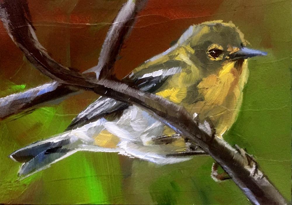 """""""Pine Warbler"""" original fine art by Gary Bruton"""