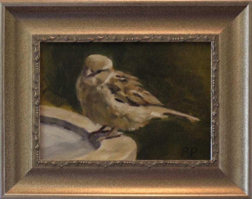 """Resting Sparrow"" original fine art by Pamela Poll"