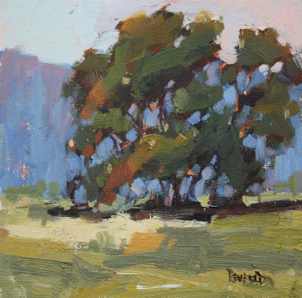 """Oak Sunset Serenade"" original fine art by Cathleen Rehfeld"