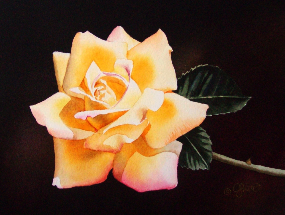 """Yellow Rose"" original fine art by Jacqueline Gnott, whs"