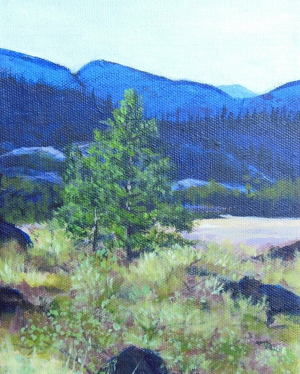 """lone pine"" original fine art by wendy black"