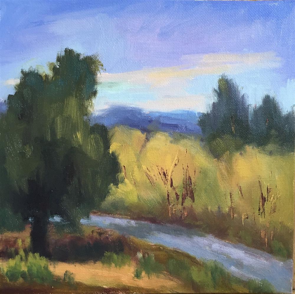 """View from Ridgeline Trail"" original fine art by Victoria  Biedron"