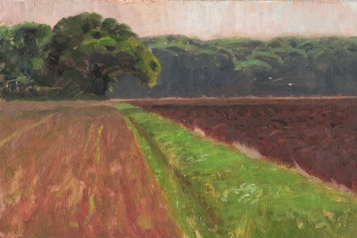 """Between the Fields"" original fine art by Ed Cooper"