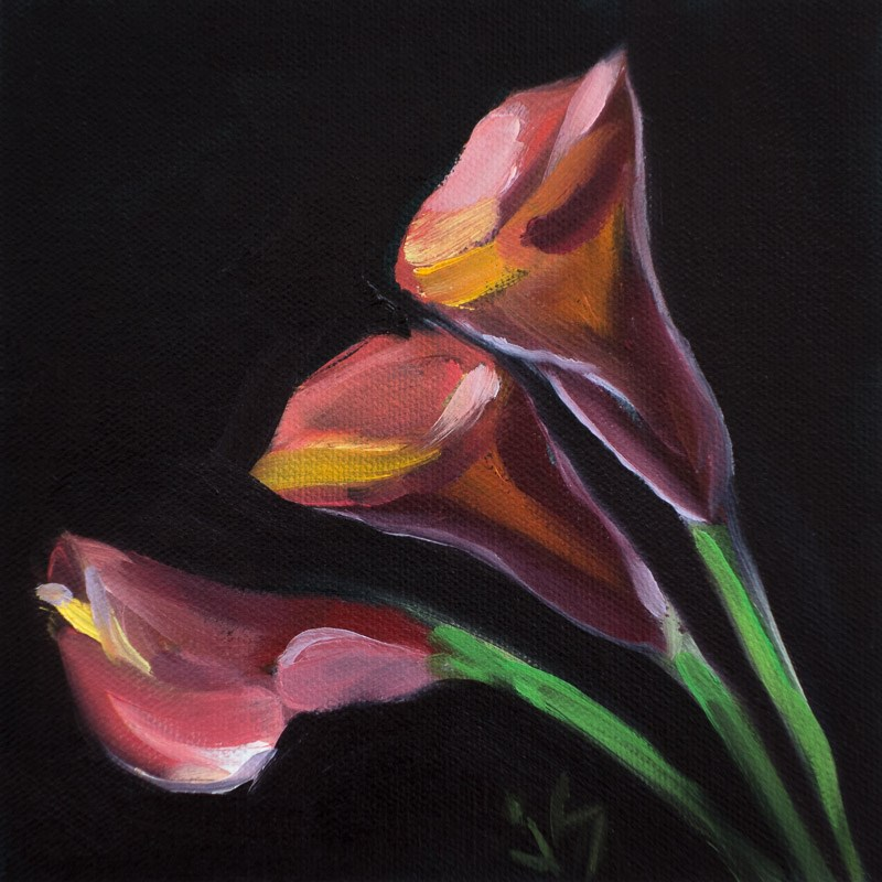 """Calla Three"" original fine art by Johnna Schelling"