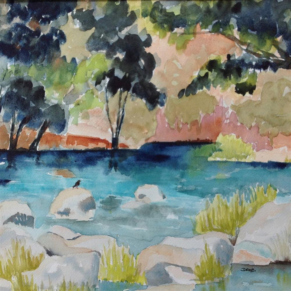 """Putah Creek Pool"" original fine art by Dana Richards"