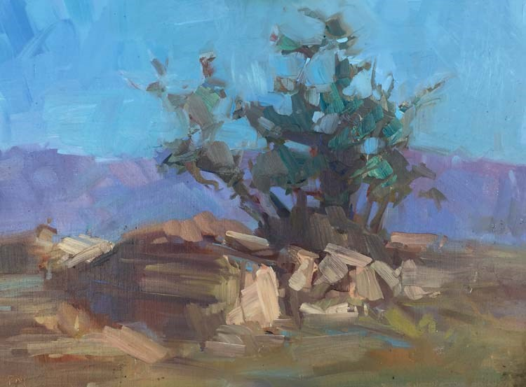 """Morning in The San Jacinto Mountains"" original fine art by Patti McNutt"