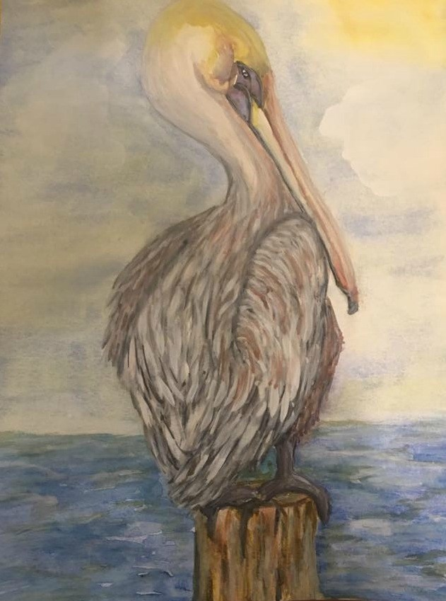 """Pelican striking a pose "" original fine art by Caroline harris"