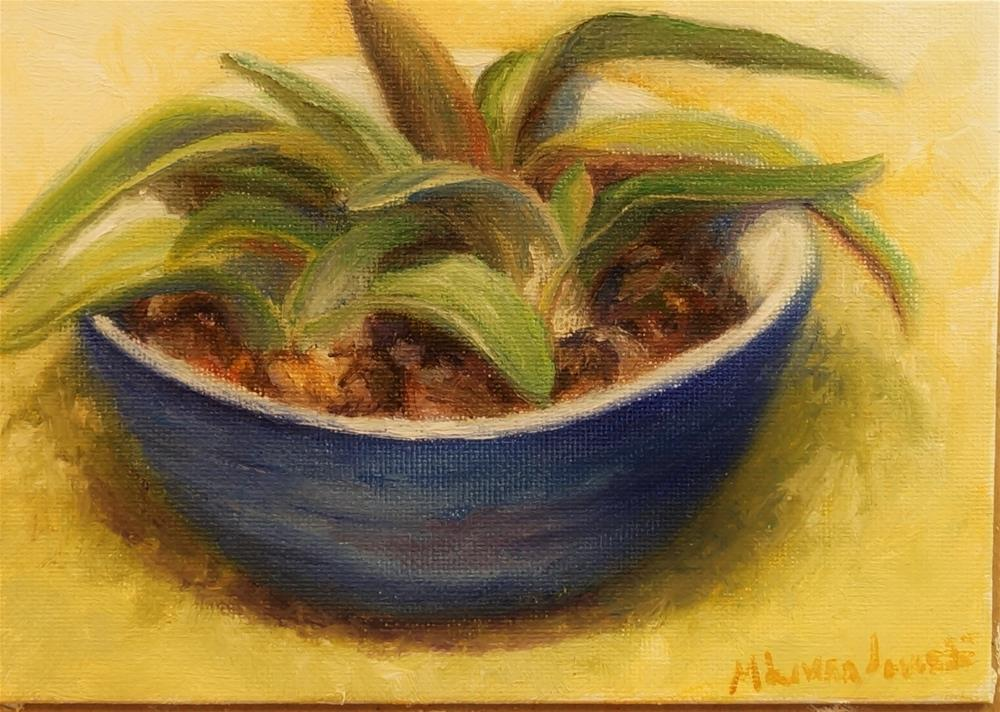 """Aloe in Blue Dish"" original fine art by Maria Levandowski"