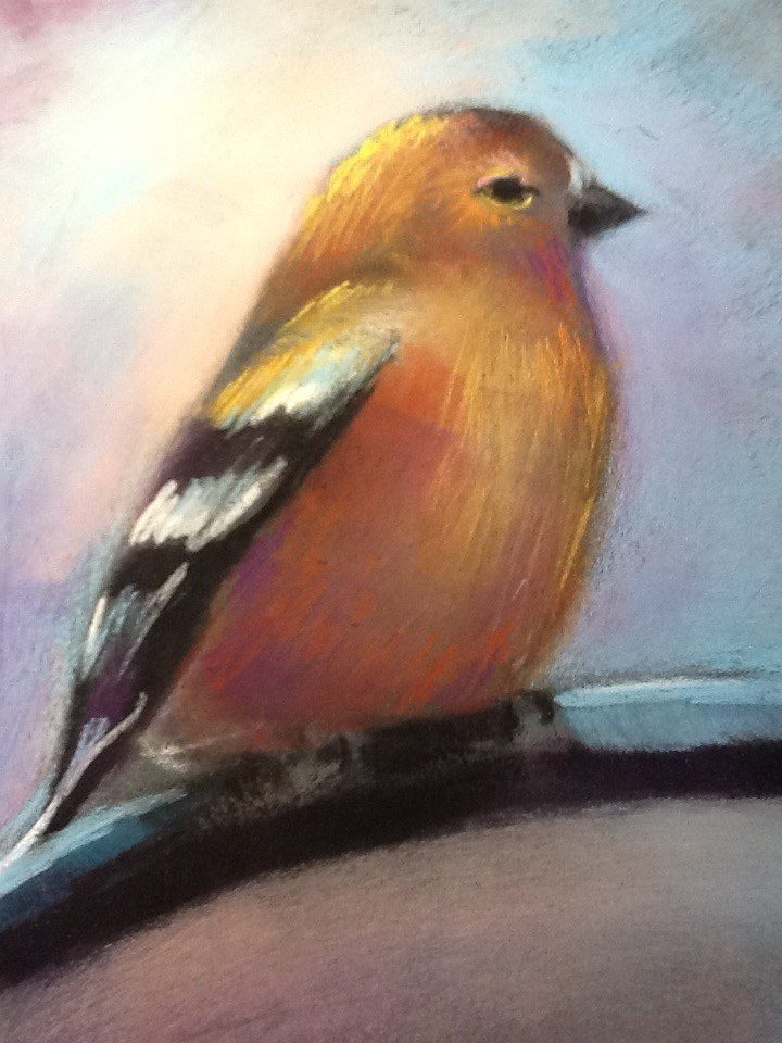 """Chickadee-dee-dee"" original fine art by Judy Albright"