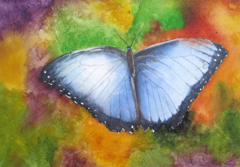 """Butterfly 2"" original fine art by Horst Berlow"