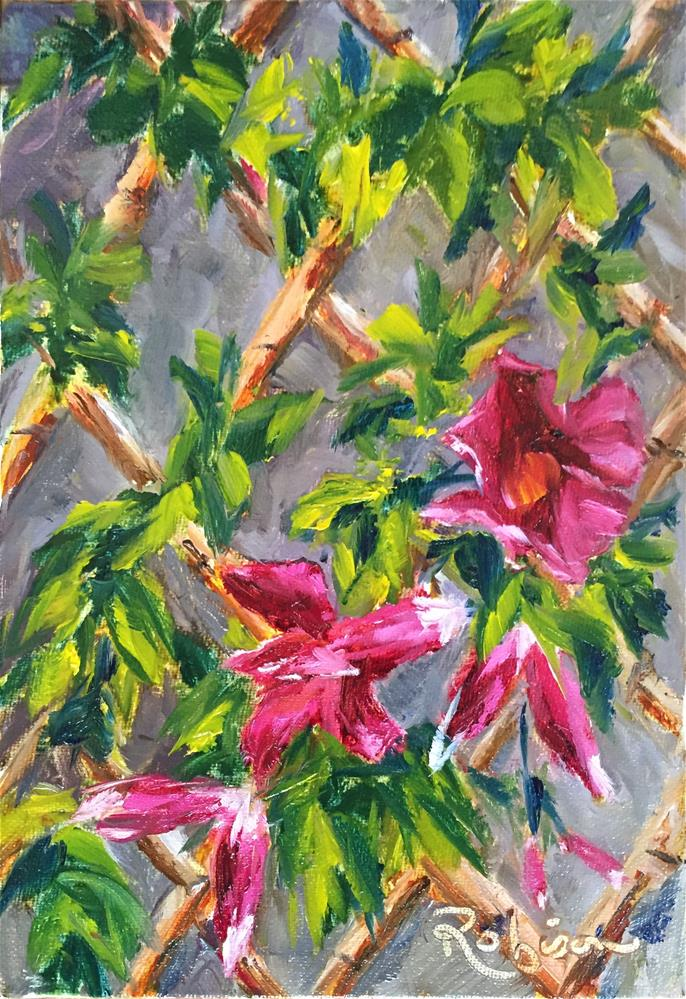 """Pink Climber"" original fine art by Renee Robison"