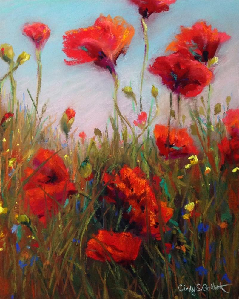 """""""Poppies Down Under"""" original fine art by Cindy Gillett"""