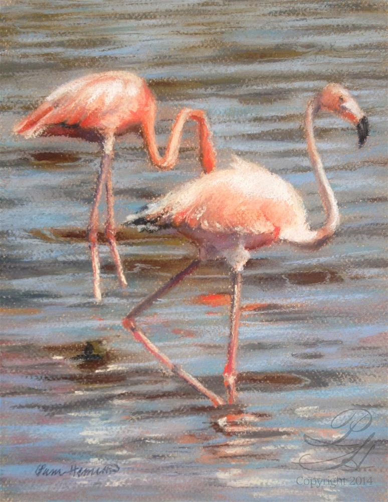"""Flamingos"" original fine art by Pamela Hamilton"