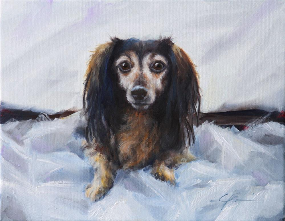 """Darby by Clair Hartmann"" original fine art by Clair Hartmann"