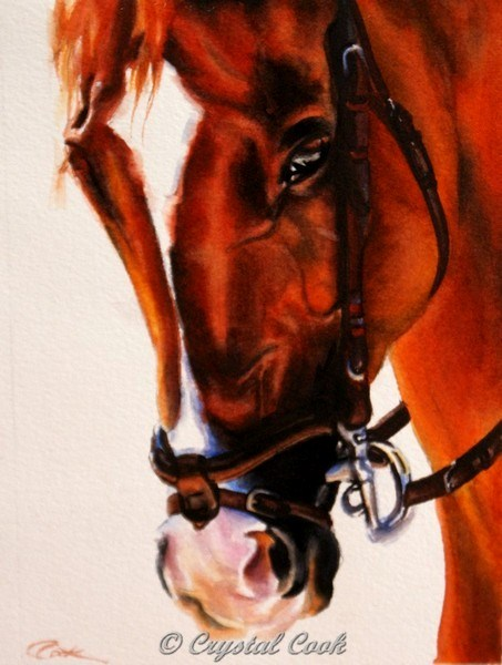 """Companion"" original fine art by Crystal  Cook"
