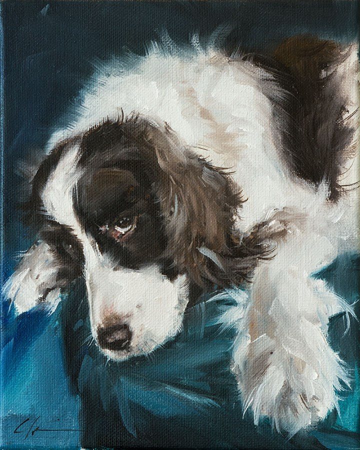 """PAINT MY DOG - Star Puppy"" original fine art by Clair Hartmann"