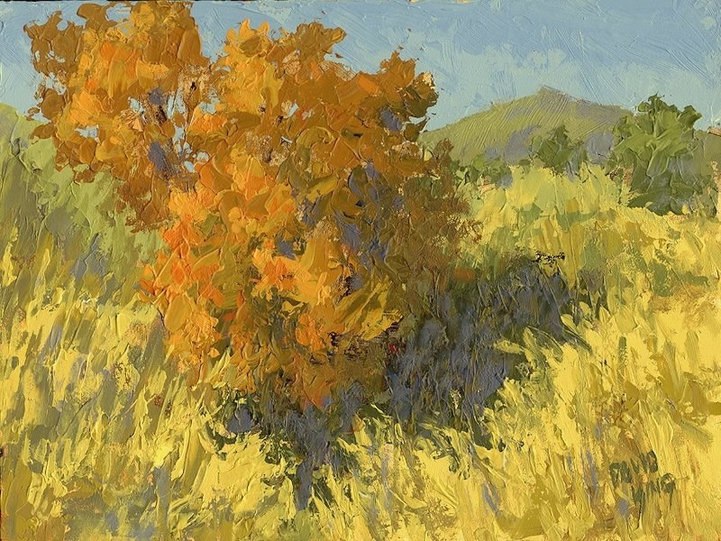 """""""Fiery Bush"""" original fine art by David King"""