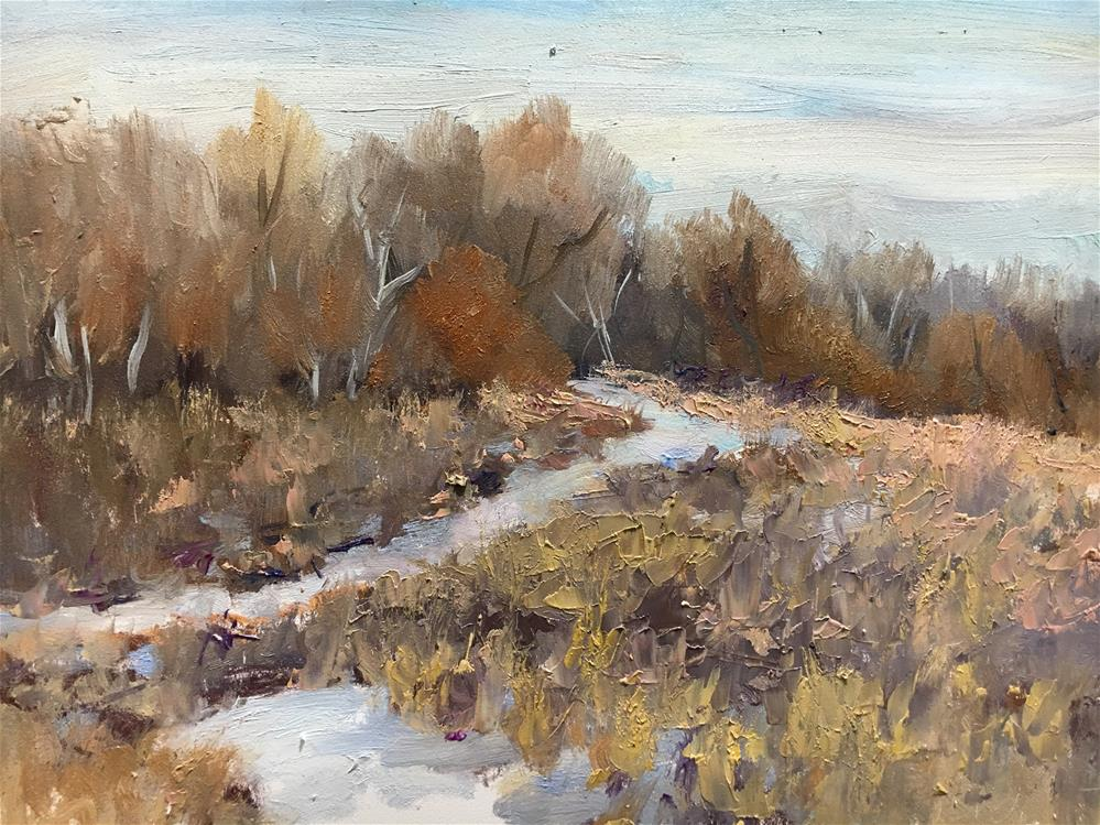 """Hyland Park "" original fine art by Judith Anderson"