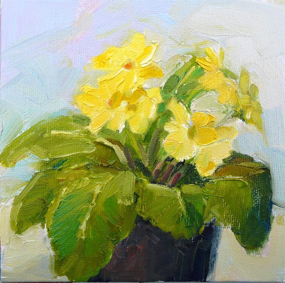"""Yellow Primrose.still life,oil on canvas,6x6,price$200"" original fine art by Joy Olney"