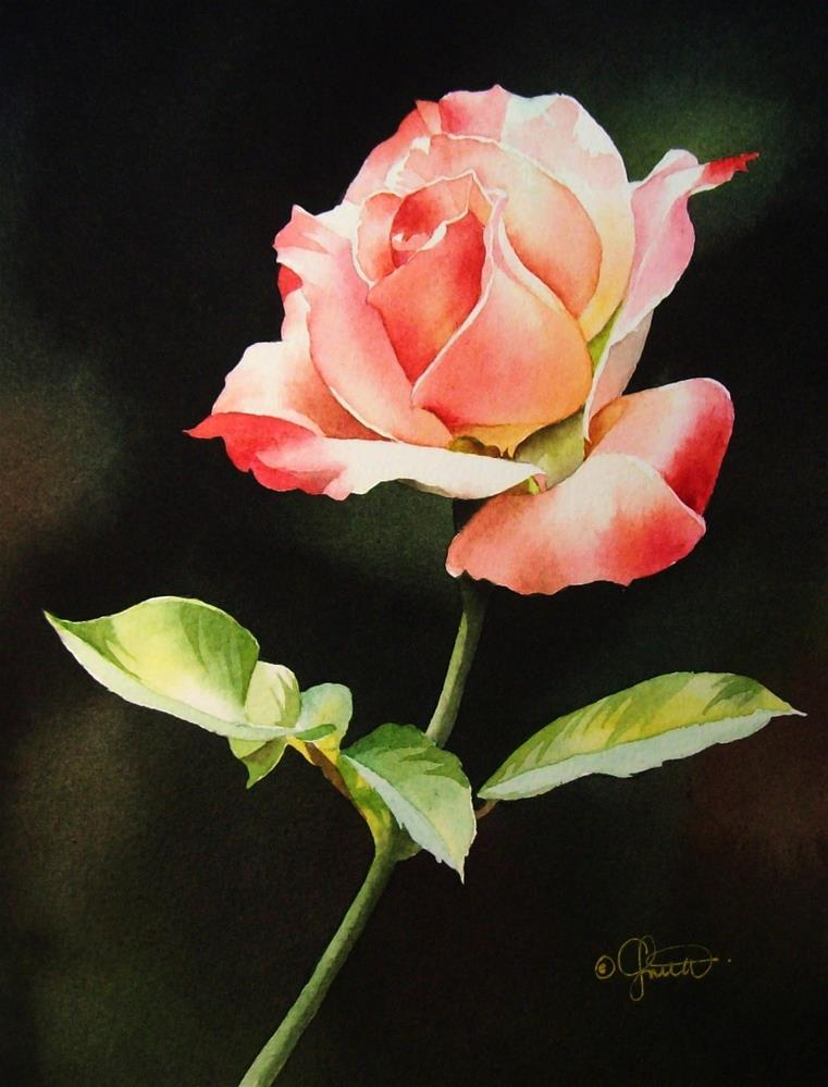 """Pink & White Rose"" original fine art by Jacqueline Gnott, whs"