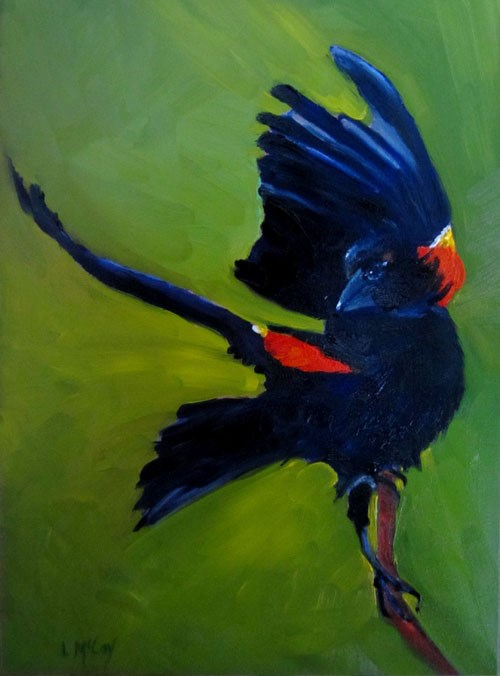 """Red Winged Blackbird in Flight, by Linda McCoy"" original fine art by Linda McCoy"