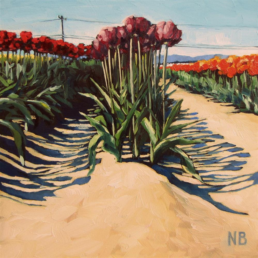 """Cream of the Crop"" original fine art by Nora Bergman"