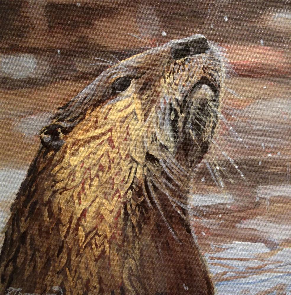 """Otter"" original fine art by Rachel Thompson"