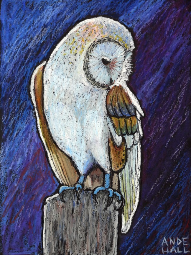 """Barn Owl"" original fine art by Ande Hall"