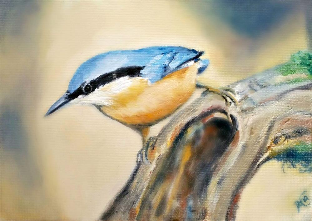 """Nuthatch on the Go"" original fine art by Dana C"