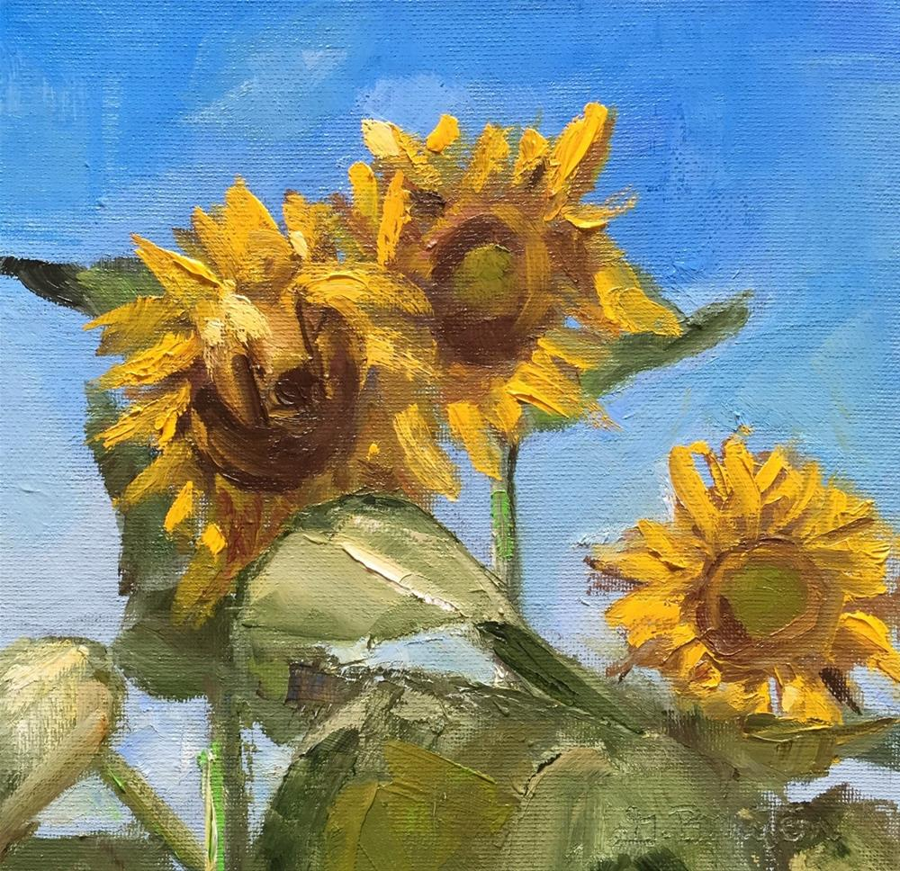 """Sunflowers"" original fine art by Gary Bruton"