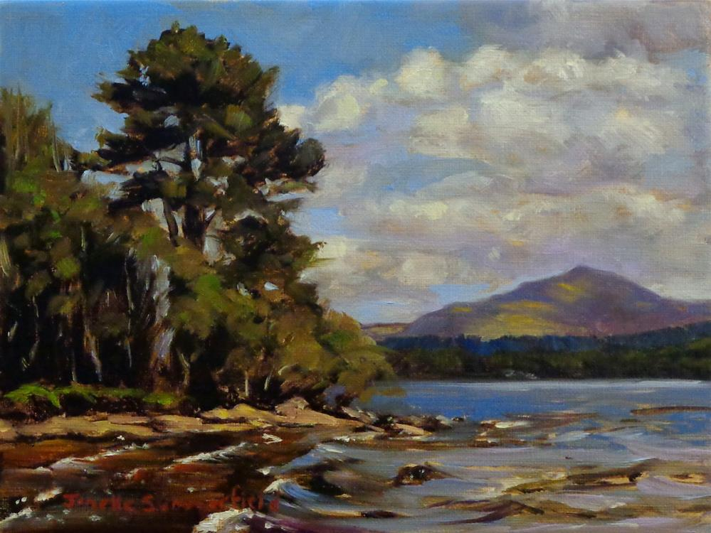 """Killarney National Park"" original fine art by Jonelle Summerfield"
