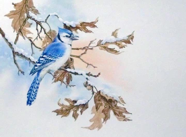 """Eastern Jay"" original fine art by Jean Pierre DeBernay"