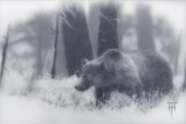 """Grizzly"" original fine art by Terri Heinrichs"