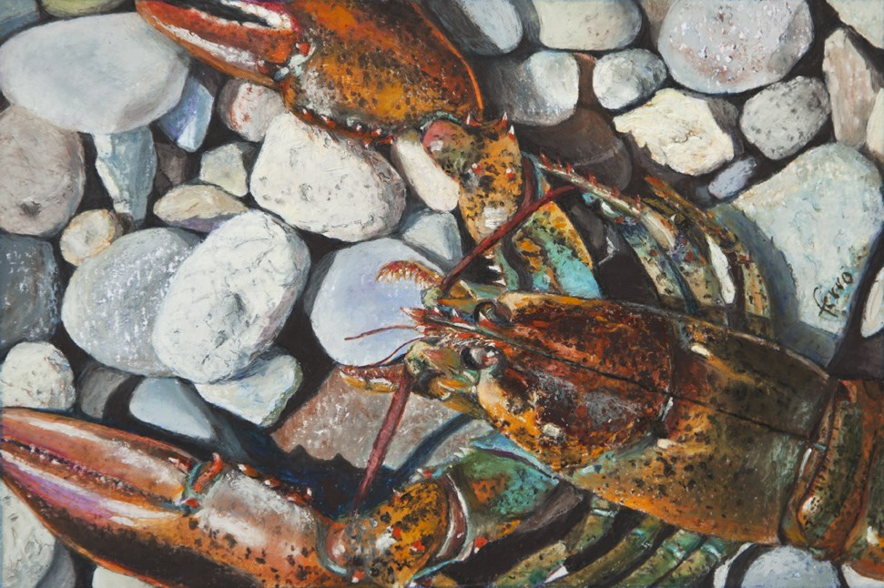 """Hard Shell"" original fine art by Susan Ferro"