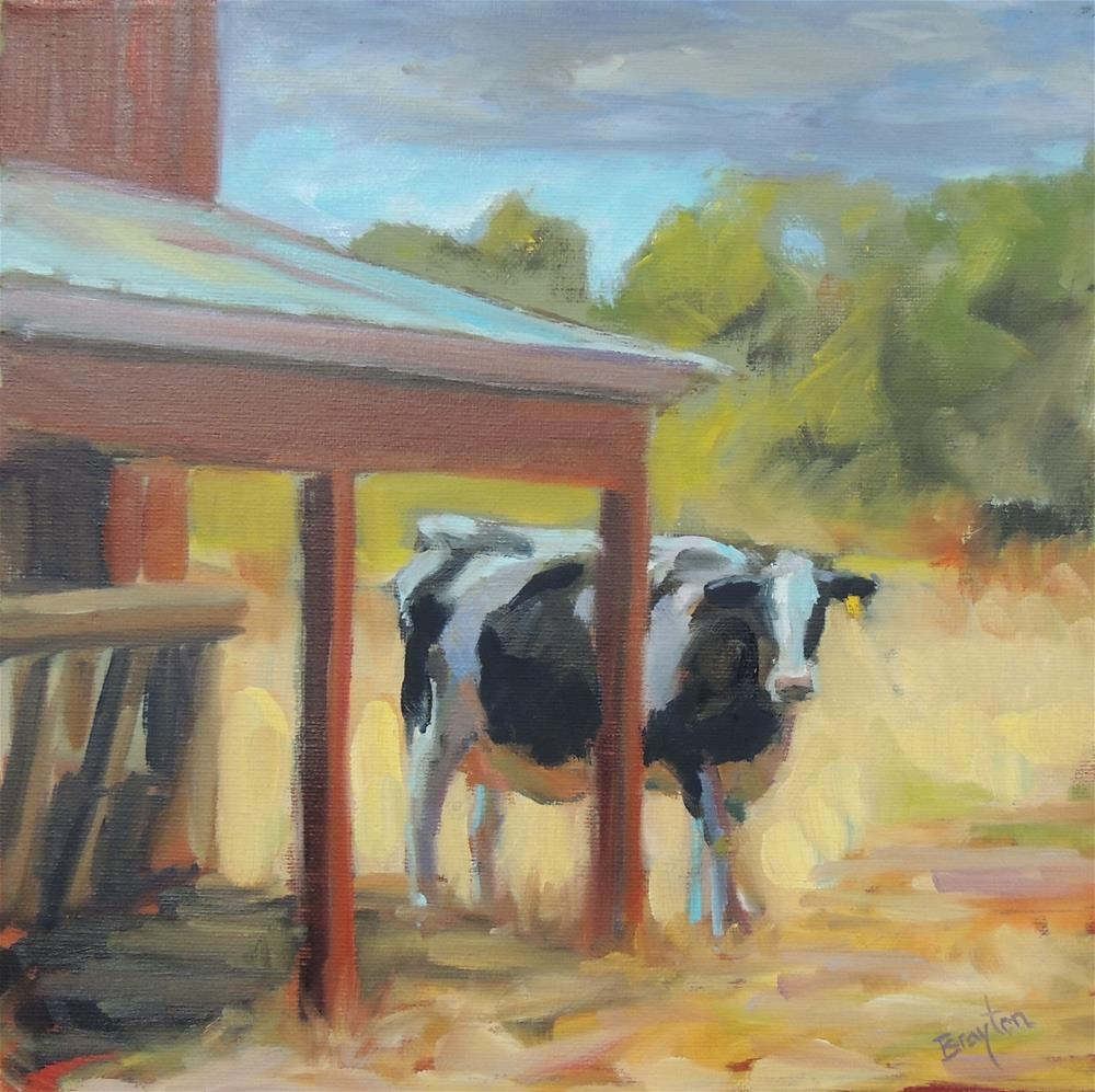 """Foggy Day Cow"" original fine art by Wendy Brayton"